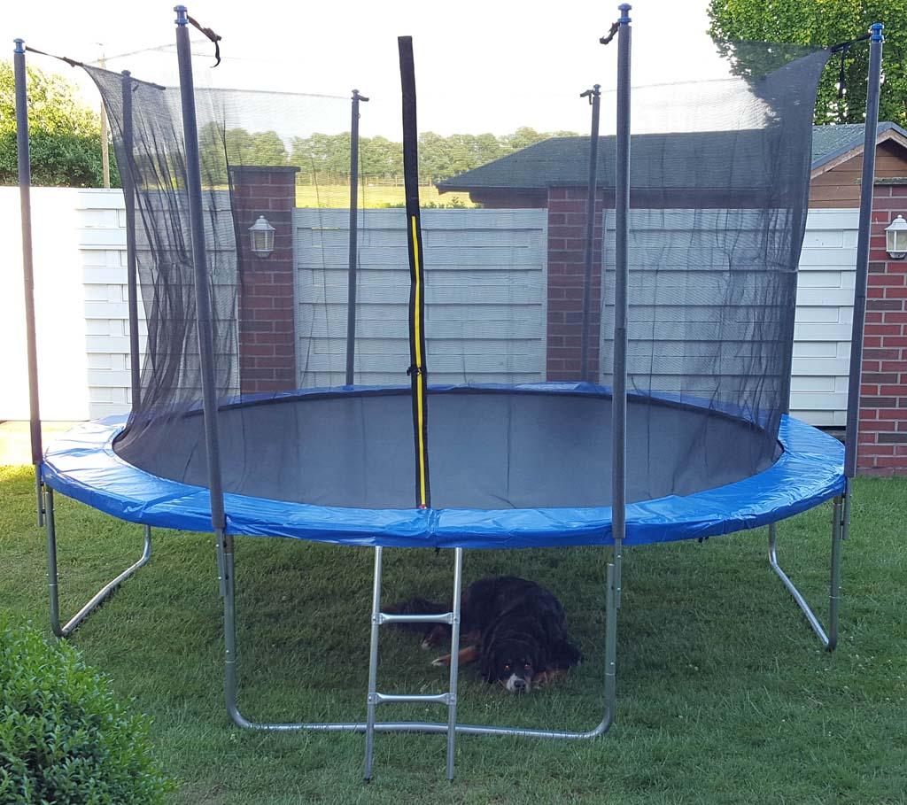 trampolin 305cm 366cm 430cm durchmesser komplettset mit netz und leiter ebay. Black Bedroom Furniture Sets. Home Design Ideas